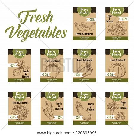 Vegetable tag and farm market veggies price labels set. Fresh tomato, carrot, bell pepper and cabbage, broccoli, eggplant, cucumber and pea, pumpkin and beet sketch card with discount offer text