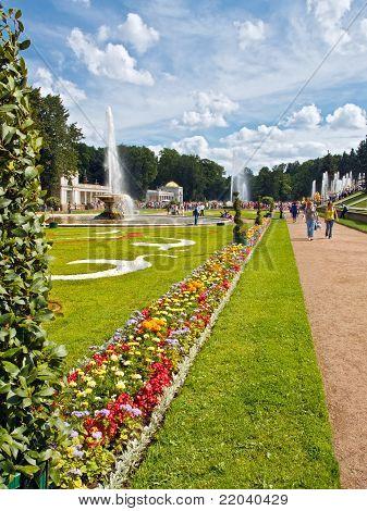 Beautiful Lawn And Flowers In Peterhof