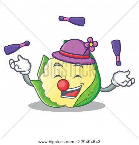Juggling cauliflower character cartoon style vector illustration
