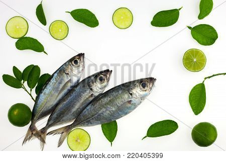 Selar crumenophthalmus ,Bigeye scad ,fish with lemon and leaf isolated on white background,concept cooking background