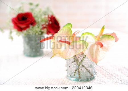 close up bouquet of Anthurium and red flowers
