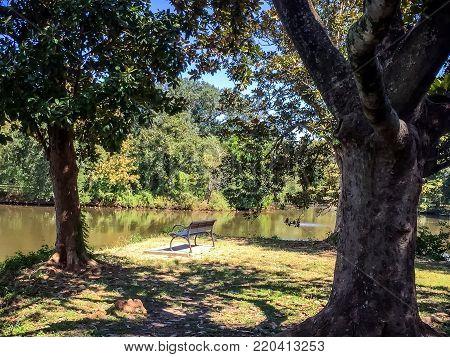 Park bench in Audubon Park New Orleans
