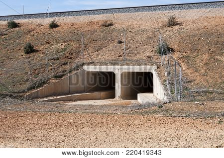 Wildlife passage in the Madrid-Levante High-Speed Railway