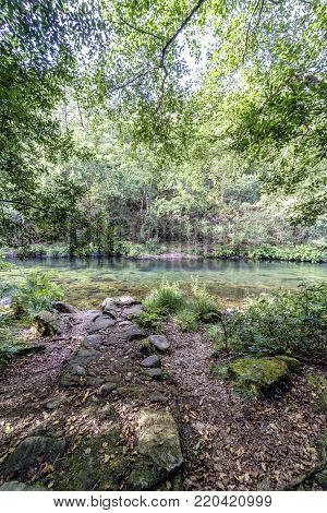 Very irregular stone path on the shore with rocks and tree cover and vegetation of the river Eume in Galicia, Spain. With a very calm stream and very transparent water