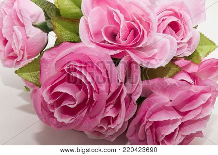fresh bouquet of pink flowers on a white background
