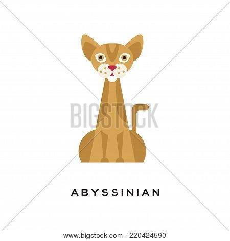 Purebred abyssinian cat. Elegant short-haired feline with brown tabby coat, muscular body, large, pointed ears and red nose. Cartoon character of domestic animal. Isolated flat vector illustration. poster