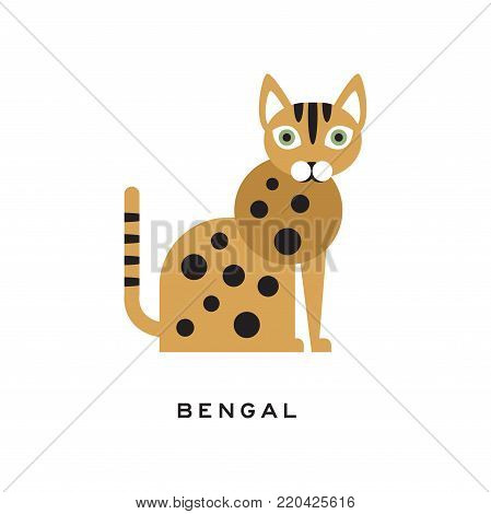 Purebred bengal cat. Cartoon domestic animal character with cute rounded muzzle, brown-spotted body and green eyes. Design for poster of zoo store or vet clinic. Isolated flat vector illustration.
