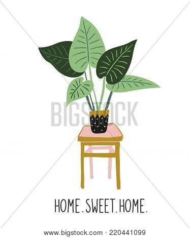 Hand drawn tropical house plants. Scandinavian style illustration with alocasia, modern and elegant home decor. Vector print design with lettering - ' home sweet home '.