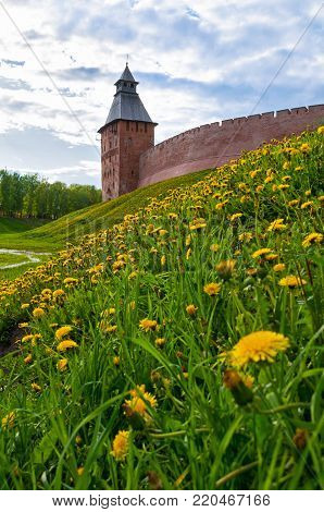 Veliky Novgorod, Russia. Architecture landscape of Saviour Tower of Veliky Novgorod Kremlin, Russia in sunny spring day