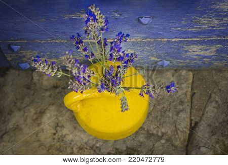 Lavender in a yellow kouvinum on a background of purple shabby door