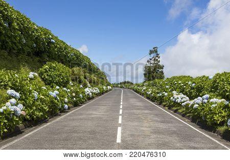 Beautiful Coastline road in Sao Miguel Island - Azores
