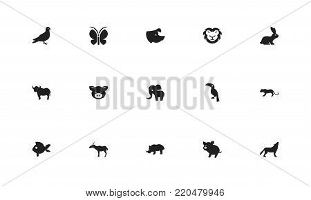 Set of 15 editable zoology icons. Includes symbols such as swine, antelope, fish and more. Can be used for web, mobile, UI and infographic design.