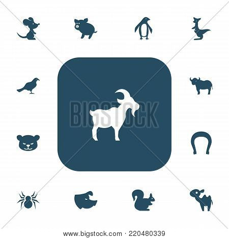 Set of 13 editable zoo icons. Includes symbols such as camel, swine, rat and more. Can be used for web, mobile, UI and infographic design.