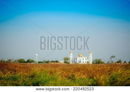 Landscape sky and flowering grass at Central Mosque, Ayuthaya of Thailand.