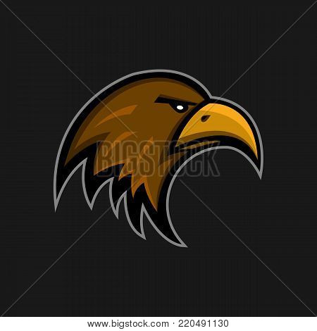 Mascot Eagle Logo Sports Club. Falcon Head Emblem. Aggressive Hunter Face Hawk Bird Sticker.