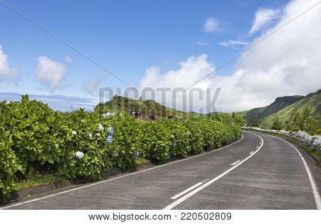 Coastline road in Sao Miguel - Azores