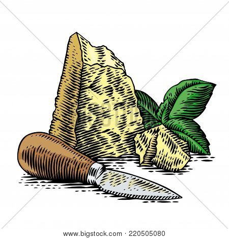 Piece and crumbles of hard cheese with fresh green basil and knife