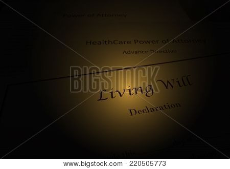 Living Will document with Healtcare Power of Attorney