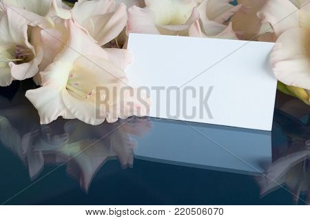 Flower spring background. Gladiolus spring flowers and white card with free space. Pastel tones and soft focus, spring background with pink gladiolus spring flowers. Spring still life in soft tones. Spring composition