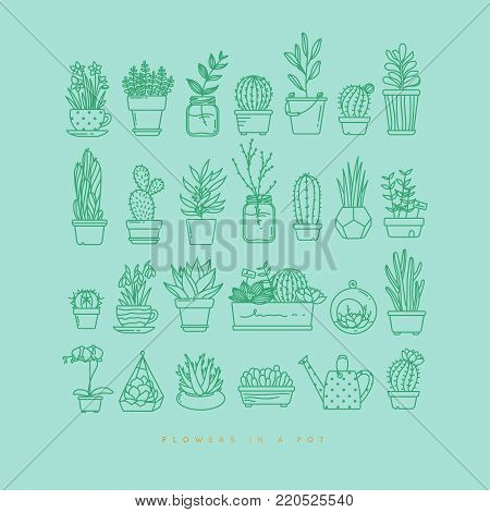 Icon flat set plants in pots drawing with menthol on turquoise background