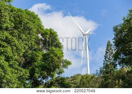 Wind turbine between trees on a hilltop in Hawaii supplying renewable sustainable electricity and power from the conversion of the kinetic energy of the wind