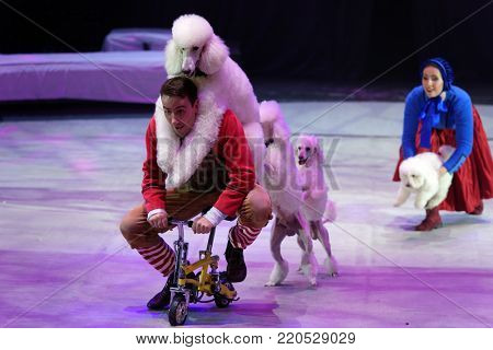 ST. PETERSBURG, RUSSIA - DECEMBER 28, 2017: Victoria Akimova (right) as Gerda and Sergey Akimov as Kai with trained dogs in the circus show Snow Queen by Great Moscow circus