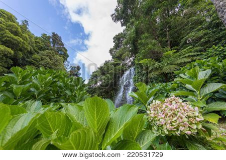 Beautiful waterfall ( Ribeira dos Caldeiroes ) in Sao Miguel Island - Azores Portugal