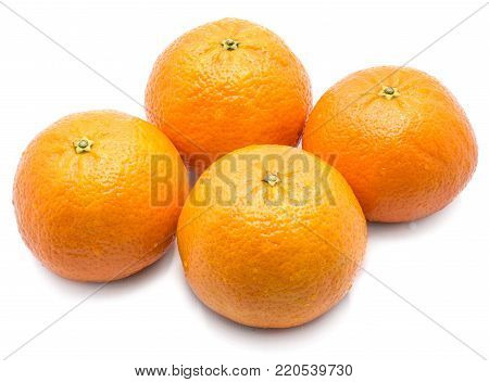 Four whole Clementines with water drops isolated on white background