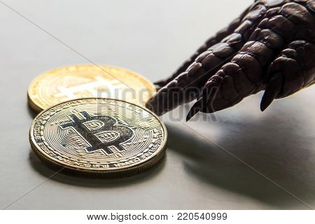 The paw of the monster reaches for the bitcoins. Macro. Close up.