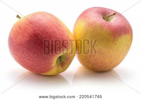 Two apples (Evelina variety) isolated on white background yellow red fresh