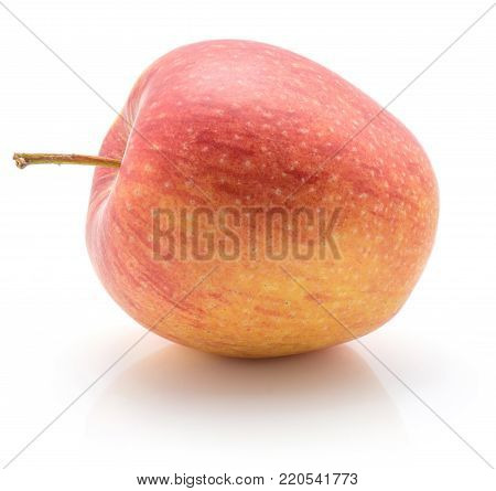 One apple (Evelina variety) isolated on white background yellow red