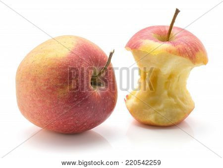 Apple stump (Evelina variety) comparing with one whole red yellow isolated on white background