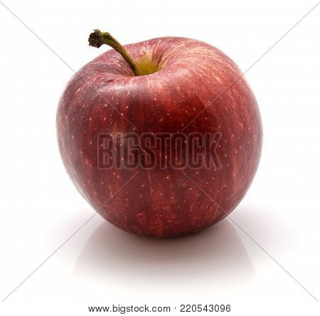 One whole Gala apple with a stem isolated on white background