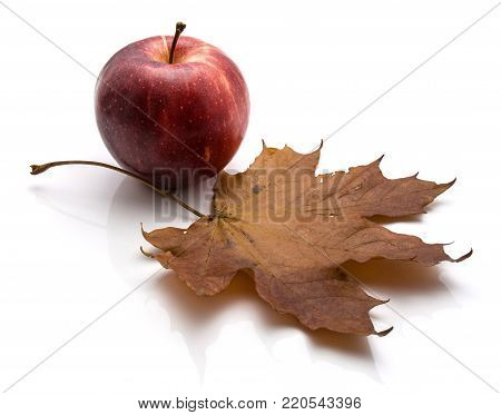 One whole Gala apple with maple leaf isolated on white background autumn composition