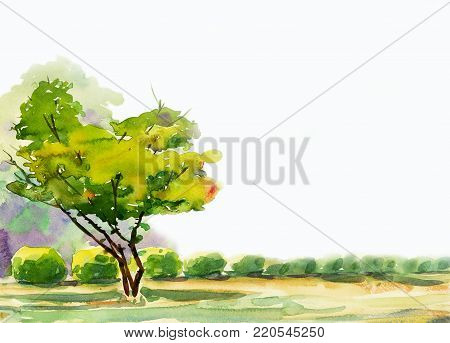 Abstract watercolor painting colorful of one tree in the garden and grass with nature spring trees,in white background. Painted Impressionist, illustration