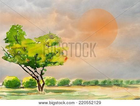 Watercolor painting colorful of one tree in the garden and emotion orange sun with nature spring trees,in gray cloud sky background. Painted Impressionist, illustration
