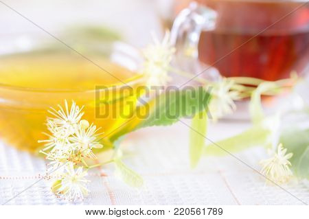 Tea With Flowers Of A Linden And White Honey. A Laying Fragment For A Tea Drinking With Steering-whe
