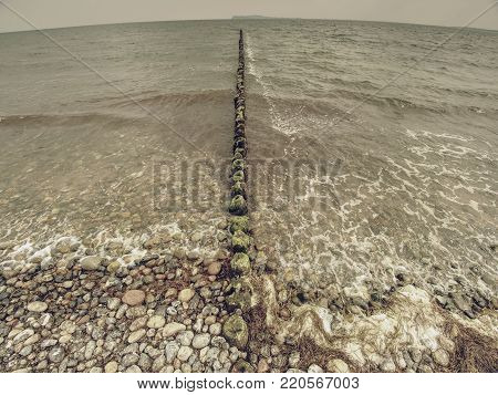 Wooden breakwaters on a shore of the Baltic Sea with a sun hidden in low clouds. Smooth water level after storm.