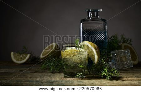 Cocktail With Gin  .
