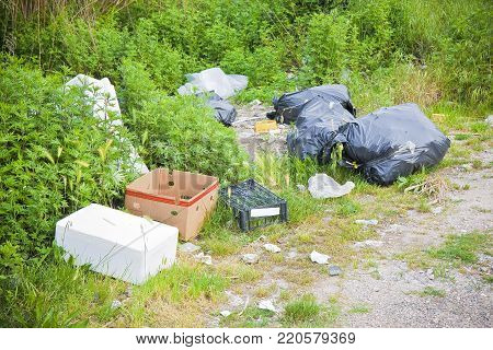 Illegal dumping in the nature; garbage bags and boxes left in the nature