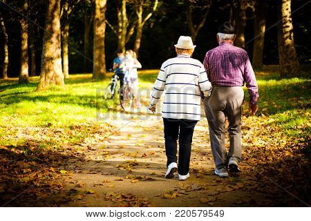 Elderly couple walking away from the camera arm in arm through a wooded park in a shaft of sunlight amongst the trees
