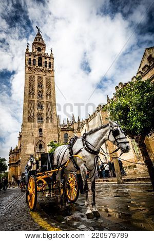 Horse and buggy or cart with bright yellow wheels for tours and sightseeing standing in a wet road in front of a historical stone building in a tourism and travel concept