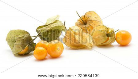 Physalis berries stack isolated on white background many in husk four orange berries