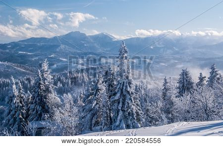 view to Mala Fatra mountains with Velky Rozsutec and Stoh hill from Velka Raca hill in Kysucke Beskydy mountains on slovakian - polish borders during winter day with blue sky and clouds
