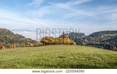 autumn landscape with meadows, isolated trees, colorful forests and blue sky with fog bellow above Hricovske Podhradie village near Bytca city in Slovakia