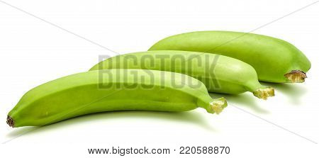Three whole plantain isolated on white background poster