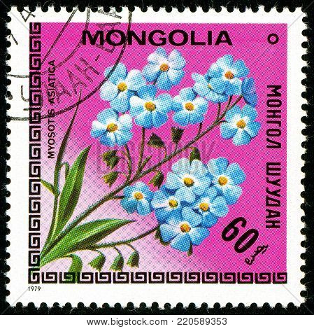 Ukraine - circa 2018: A postage stamp printed in Mongolia shows drawing Flower Myosotis asiatica. Series: Flowers. Circa 1979.