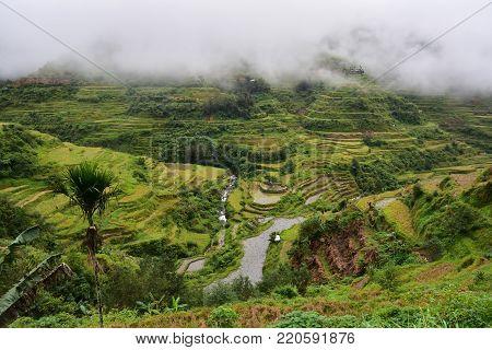 Rice Terraces UNESCO heritage - Banaue, Philippines