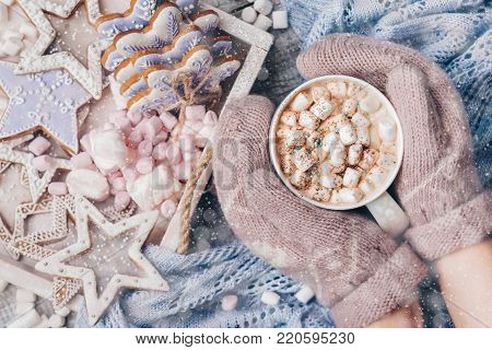 Hot Chocolate with Marshmallow candies. Warming holiday drink with gingerbread cookies. Warm Christmas. Female hands in mittens holding a warm Cup cocoa enchantment