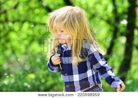 Boy With Flower On Idyllic Sunny Day